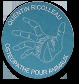 Quentin RICOLLEAU, ostéopathe animalier